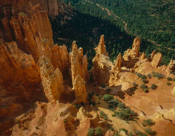 Overlook at Bryce Canyon National Park, Utah by Steve Bruno