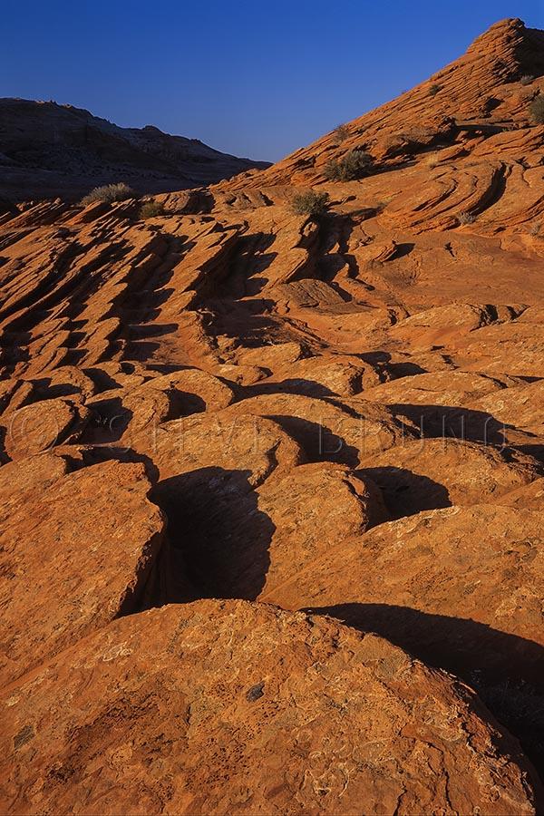 Sandstone discs line the hills of Vermillion Cliffs Wilderness, northern Arizona by Steve Bruno