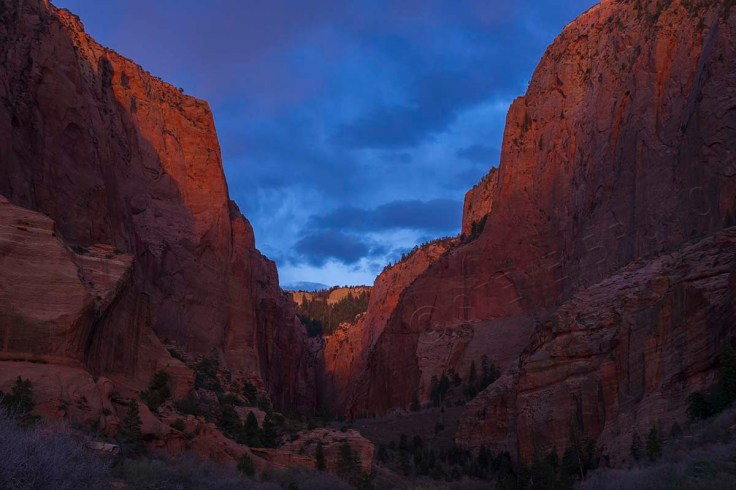 Kolob Canyons, Zion National Park, Utah