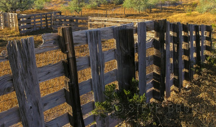 Old West Fence - Steve Bruno