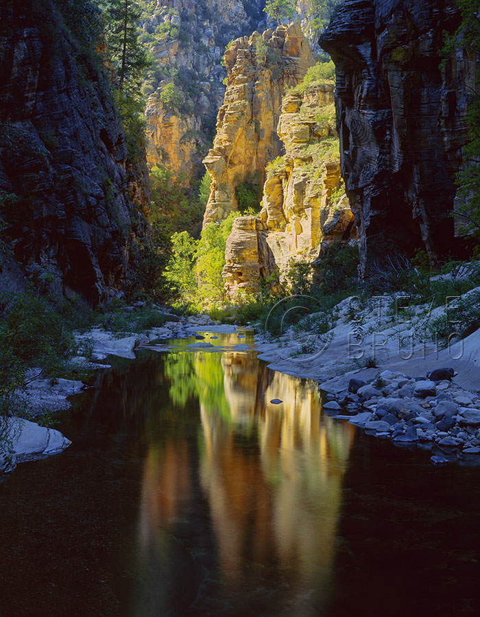 Sunlit cliffs reflect in a dark corridor of West Clear Creek Canyon, Arizona. Photo by Steve Bruno.