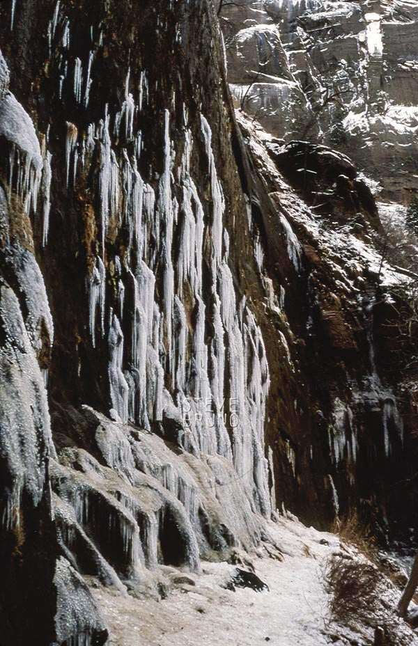 Weeping Rock in winter, Zion National Park, Utah, photo by Steve Bruno.