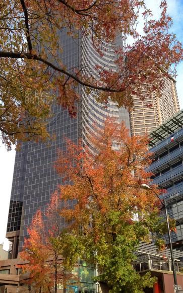 autumn, Seattle, Washington