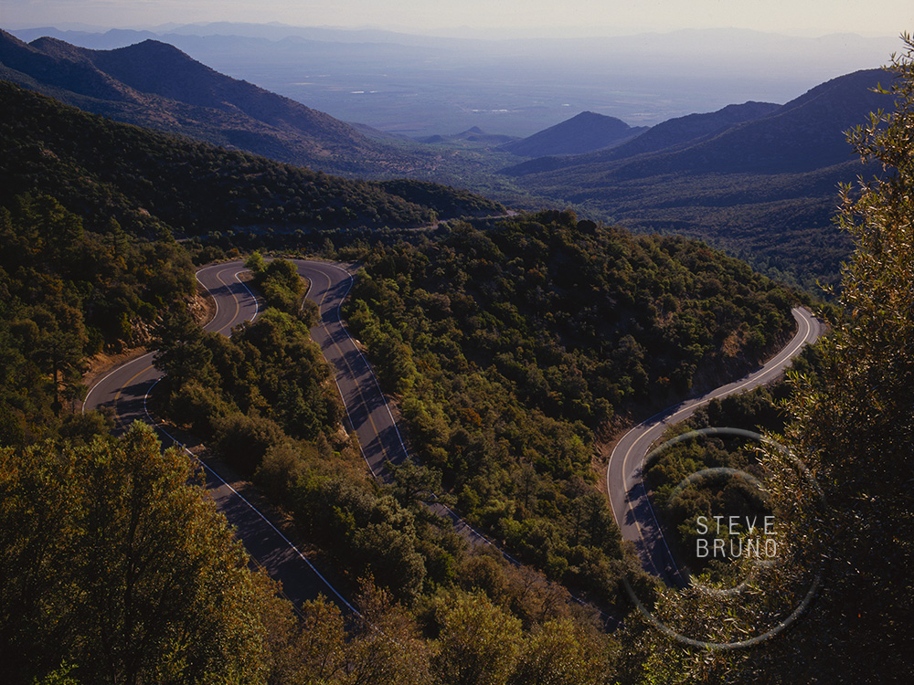 Pinaleno Mountain highway, Steve Bruno