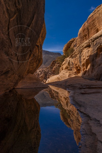 Reflections in a creek in Red Rock Nevada - Steve Bruno - gottatakemorepix