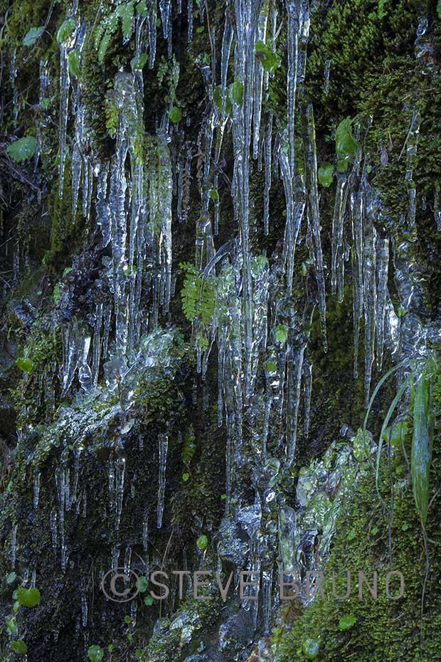 tiny-icicles