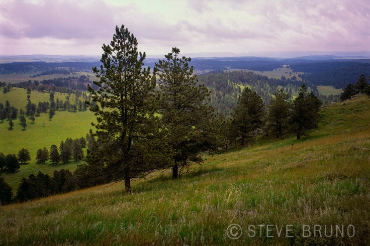 Black Hills, South Dakota, rolling hills, Steve Bruno