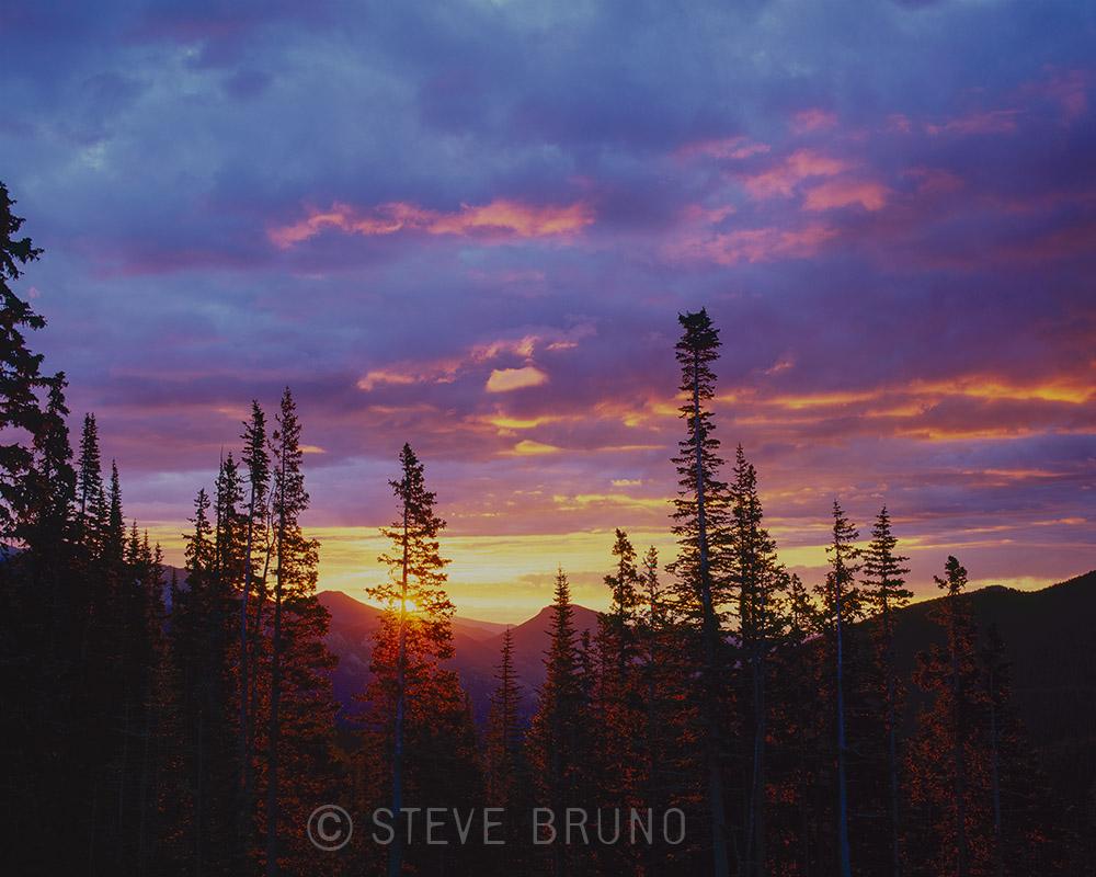 trees, mountains, sunrise, colorado
