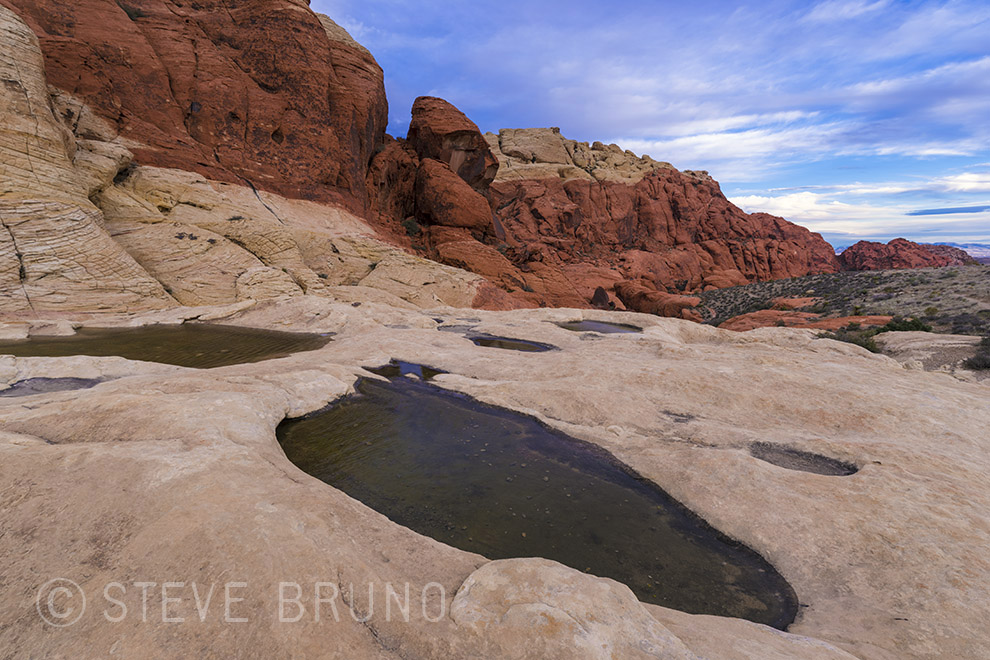 rainwater pools, Red Rock Canyon, Las Vegas, Nevada, Steve Bruno