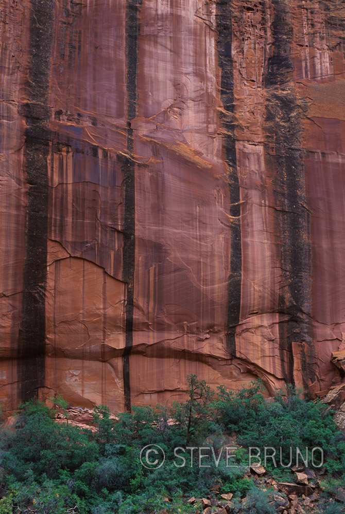 Escalante, Utah, canyon, desert varnish, gottatakemorepix