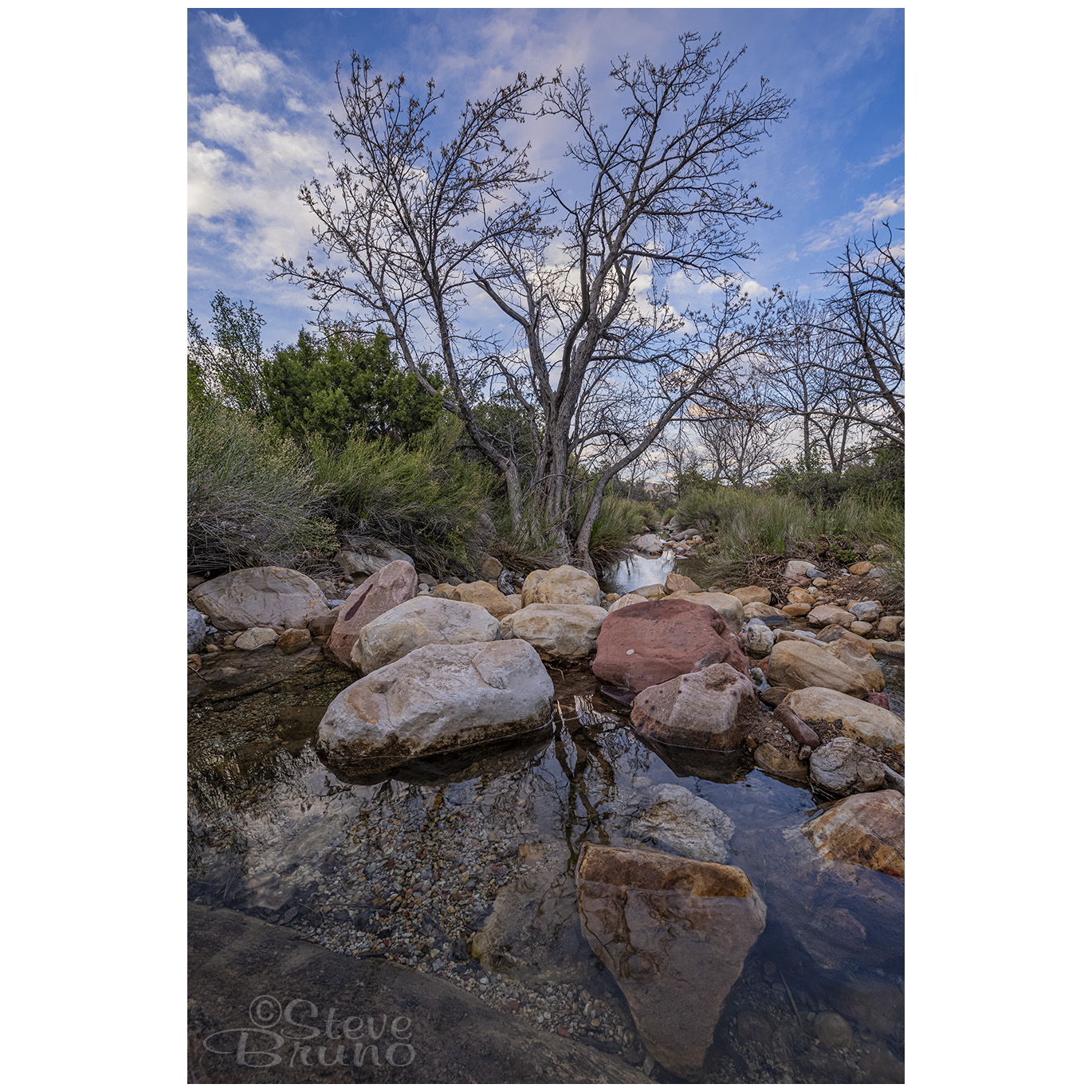 water, red rock canyon, nevada, las vegas, Steve Bruno