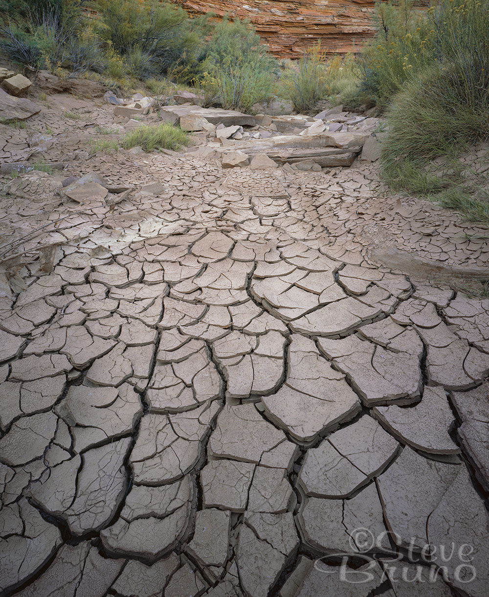 drought, desert, mud cracks, Arizona, Steve Bruno